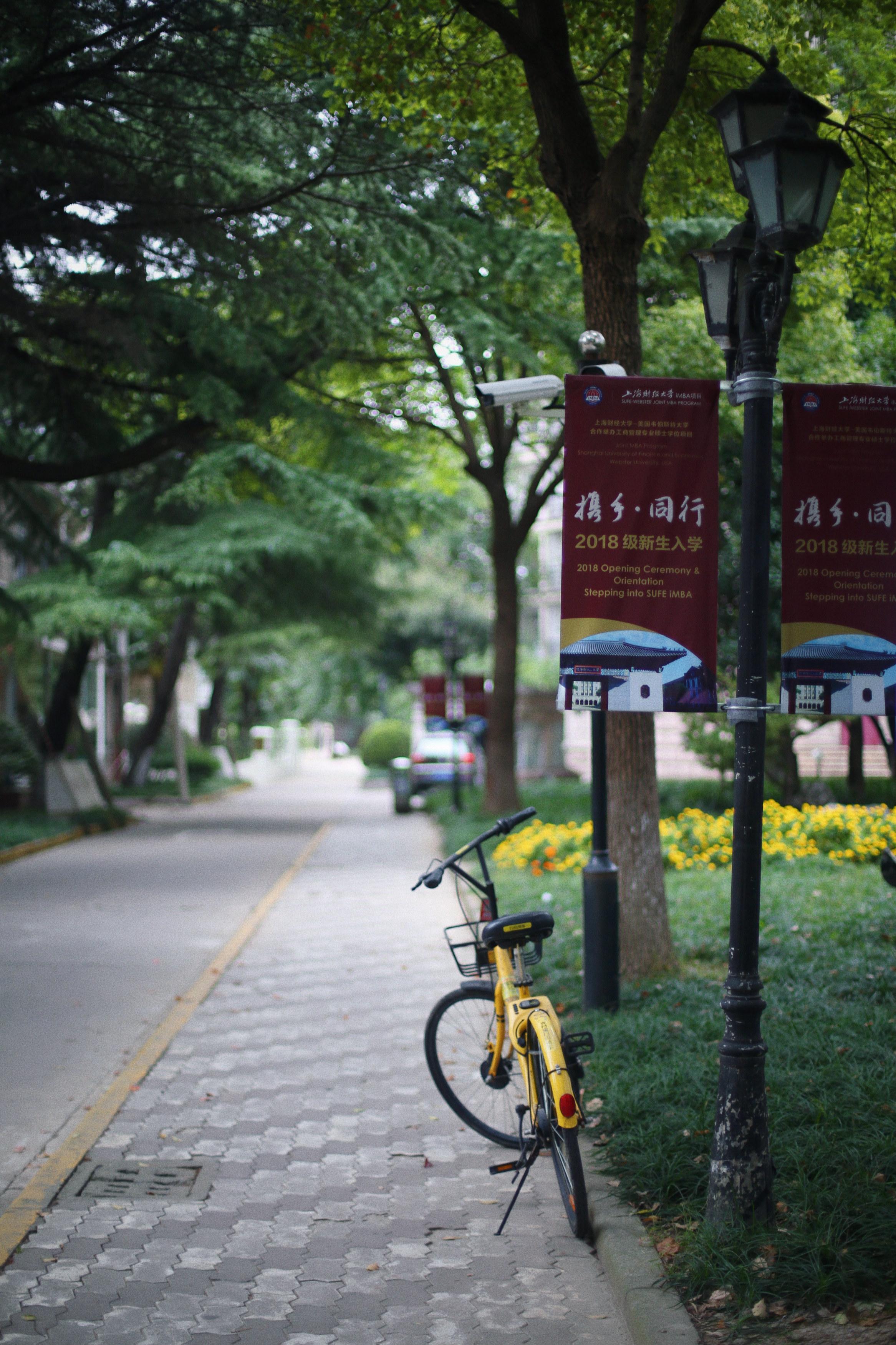 20.校园小径_meitu_1.jpg